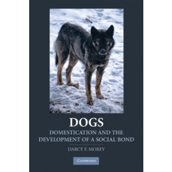 Dogs: Domestication and the Development of a Social Bon