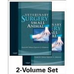 Veterinary Surgery: Small Animal,